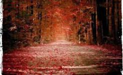 autunno_Grunge